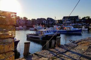Khí hậu ấm lên khiến nguồn cá và hải sản suy giảm