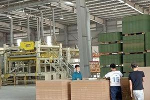 Hà Tĩnh: Nhà máy chế biến gỗ MDF lao đao