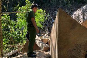 Tạm giữ 7 đối tượng 'tàn sát' Khu bảo tồn thiên nhiên Nam Kar