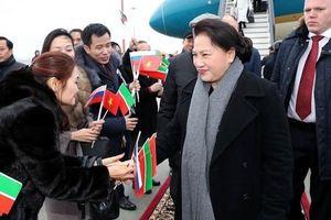 Thúc đẩy hợp tác kinh tế Việt Nam - Belarus