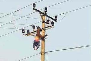 Người đàn ông tử vong khi trèo lên cột điện 35kV... uống rượu, nhảy múa