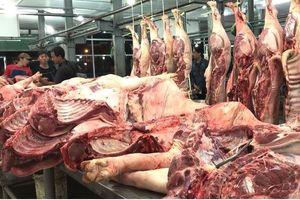 Thịt heo tăng 'sốc', bán sỉ vọt lên mốc trên 115.000 đồng/kg