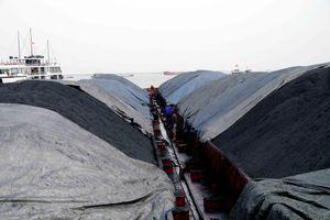 Cảnh sát biển tạm giữ 3.000 tấn than không rõ nguồn gốc ở Hải Phòng