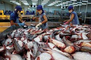Năm 2019, xuất khẩu cá tra có thể đạt 2,06 tỷ USD
