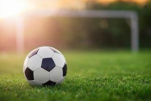 Sân cỏ bóng đá được tạo ra như thế nào?