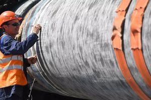Phó Thủ tướng Ukraine hy vọng ngăn chặn Nord Stream-2