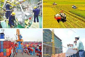 Tổng kim ngạch xuất nhập khẩu dự kiến về đích vượt mốc 500 tỷ USD