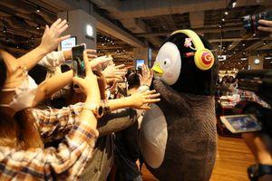 Chim cánh cụt Pengsoo nổi tiếng hơn cả BTS tại Hàn Quốc