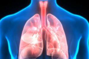 Ô nhiễm không khí kéo dài, cần làm gì để phổi luôn sạch?