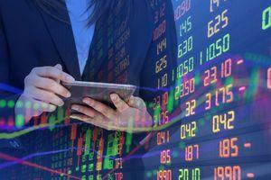 Big-Trends: Đứng ngoài thị trường sẽ bỏ lỡ nhiều cơ hội