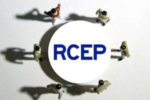 RCEP đang đứng trước triển vọng mơ hồ