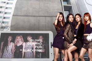 Kết quả project đòi công bằng cho BlackPink từ Blink: Naver đưa tin, YG phản hồi