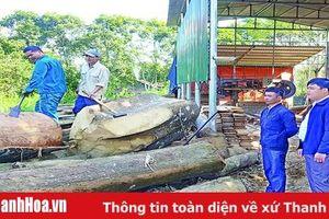 Đảng bộ xã Xuân Phú phát huy vai trò lãnh đạo trong phát triển kinh tế và giảm nghèo