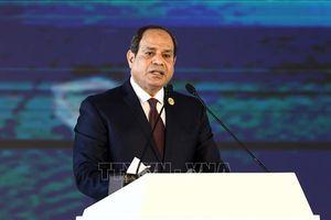Tổng thống Ai Cập cảnh báo âm mưu 'kiểm soát Libya'