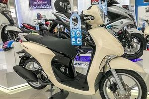 Mua xe tay ga nữ tầm giá 30 triệu: Chọn Honda Vision hay Yamaha Janus?