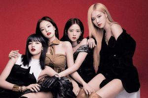 YG đáp trả động thái đòi quyền lợi cho Black Pink