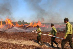 Diễn tập chữa cháy rừng mùa khô
