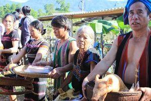 Người đồng bào Pa Cô vui đón tết cổ truyền Aza Koonh