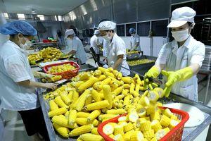 Nâng cao giá trị nông sản Việt: Cần một chiến lược toàn diện