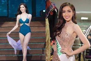 Thành tích thi quốc tế của các hoa hậu Việt năm 2019