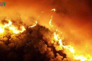 Ám ảnh những vụ cháy kinh hoàng trong năm 2019