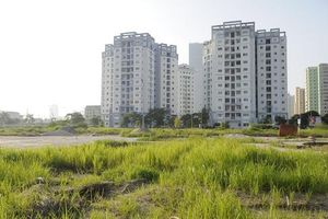 Điều chỉnh Tăng khung giá đất: Ngừa trục lợi và trốn thuế