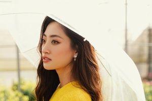 Hoa hậu Lương Thùy Linh khoe nhan sắc lung linh giữa ngàn hoa Đà Lạt