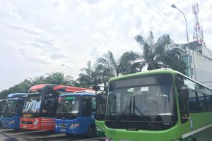 Tết Dương lịch, TP.HCM tăng cường 216 tuyến xe buýt