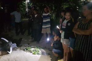 FPT đền 36 triệu đồng vì cáp rơi làm trâu bị điện giật chết