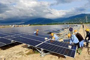 Trung Nam Group được vinh danh nhà đầu tư số 1 về năng lượng sạch