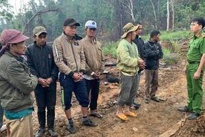 Khởi tố, bắt tạm giam 9 đối tượng trong vụ phá rừng quy mô lớn ở Đắk Lắk
