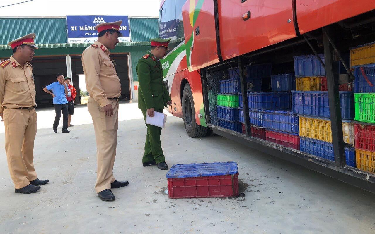 Hà Tĩnh: Bắt giữ xe khách vận chuyển hơn 5 tấn động vật hoang dã