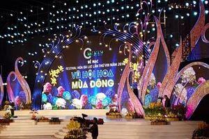 Đà Lạt: Ấn tượng với 'Vũ hội hoa mùa đông', chào đón Giáng sinh