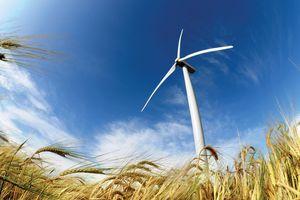 Xây lắp điện I (PCC1) ký hợp đồng EPC Dự án Điện gió Trà Vinh
