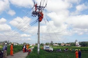 Một công nhân tử vong khi sửa chữa lưới điện