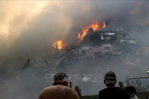 Chile nỗ lực dập tắt cháy nhà tại thành phố Valparaiso