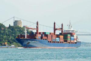 Tàu hàng 'đâm vào bờ', Thổ Nhĩ Kỳ đóng cửa eo biển Bosphorus