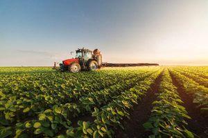 Bất động sản nông nghiệp:'Chưa minh bạch, không an toàn'
