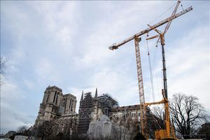 Chuẩn bị thực hiện phần phức tạp nhất trong phục dựng Nhà thờ Đức Bà Paris