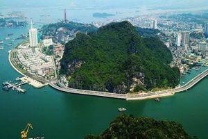 Cảng vụ hàng hải Quảng Ninh siết chặt quản lý tàu du lịch khu vực Hòn Gai