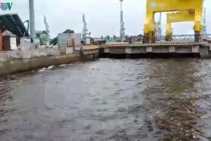 Xử phạt một doanh nghiệp ở Quảng Ngãi xả thải làm nước biển màu nâu đen