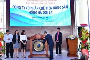 Hồng Hà Sơn La cho Hồng Hà Pharma vay vốn lãi suất 5%