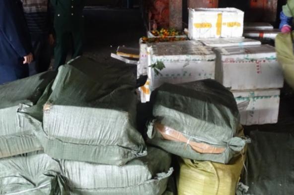 Tịch thu hơn 1 tấn thực phẩm nhập lậu