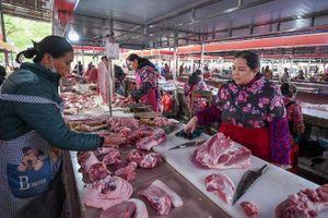 Trung Quốc kiểm soát thành công giá thịt lợn