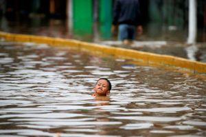 Mưa lớn đổ xuống Jakarta, 19 người thiệt mạng
