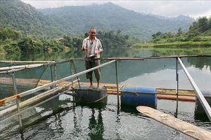 Nỗ lực giảm nghèo bền vững - Thực tiễn từ tỉnh Nghệ An