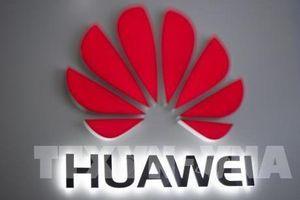 Chính phủ Canada chịu ức ép loại Huawei ra khỏi mạng 5G