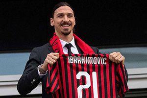 Cựu HLV Milan 'tiếc đứt ruột' khi Ibrahimovic trở lại sân San Siro