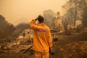 Những hình ảnh khiến người xem rớt nước mắt trong đại thảm họa cháy rừng ở Australia