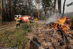 Kinh hoàng cảnh tượng cháy rừng như 'hỏa ngục' ở Australia